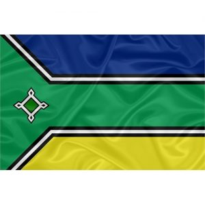Bandeira Estampada Amapá