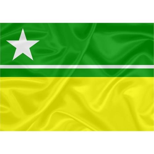 Bandeira Boa Vista - Roraima