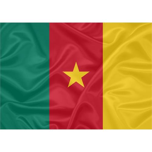 Bandeira Camarões