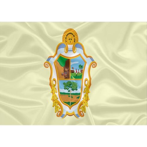 Bandeira Manaus - Amazonas