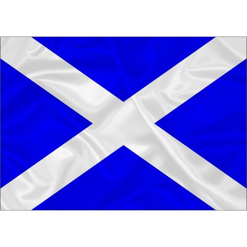 Bandeira Náutica Mike