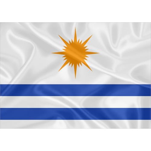 Bandeira Palmas