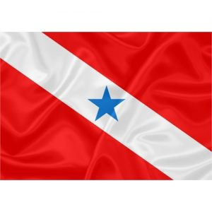 Bandeira Pará