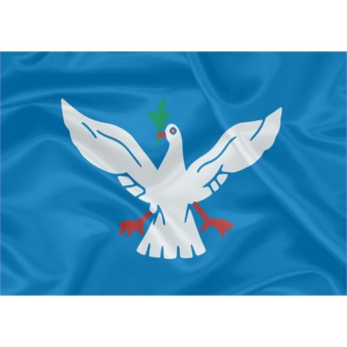 Bandeira Salvador - Bahia