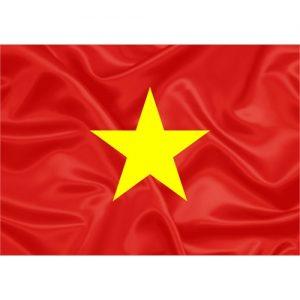 Bandeira Vietnã