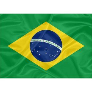 Bandeira Estampada Brasil