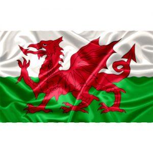 Bandeira País de Gales